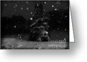 Snowy Night Greeting Cards - Dreamy Snowing Greeting Card by Lj Lambert