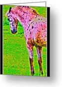 Dressage Digital Art Greeting Cards - Dressage Test Greeting Card by East Coast Barrier Islands Betsy A Cutler