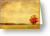 Fall Scene Greeting Cards - Dressed In Red Greeting Card by Emily Stauring