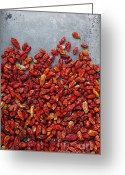 Gourmet Vegetable Greeting Cards - Dried Chili Peppers Greeting Card by Carlos Caetano