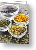 Lavender Greeting Cards - Dried medicinal herbs Greeting Card by Elena Elisseeva
