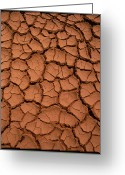 Mud Greeting Cards - Dried Mud Greeting Card by Dr Morley Read