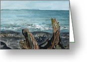 Kodiak Painting Greeting Cards - Driftwood Greeting Card by Brenda Owen