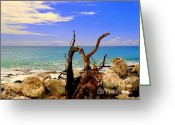 Blues Greeting Cards - Driftwood Island Greeting Card by Karen Wiles