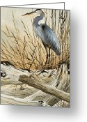 Wildlife Greeting Cards Prints Painting Greeting Cards - Driftwood Splendor Greeting Card by James Williamson