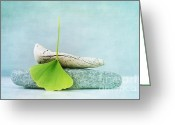 Still Life Greeting Cards - Driftwood Stones And A Gingko Leaf Greeting Card by Priska Wettstein