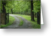 Driveways Greeting Cards - Driveway to Nowhere Greeting Card by Sabrina  Hall