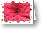 Flower Greeting Card Greeting Cards - Drops Upon Raindrops 1 Greeting Card by Carol Groenen
