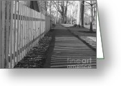 Flossmoor Greeting Cards - Dry Winter Lines Greeting Card by Roy Kaelin