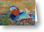 Rich Colors Greeting Cards - Duck in pond Greeting Card by Rashid Hamza