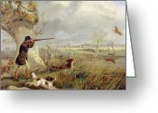 Hounds Greeting Cards - Duck Shooting  Greeting Card by Henry Thomas Alken