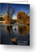 Sunset Framed Prints Greeting Cards - Ducks On Ice Greeting Card by Yhun Suarez