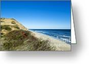 Vistas Greeting Cards - Dune Cliffs and Beach Greeting Card by John Greim