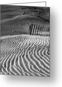 Sand Fences Photo Greeting Cards - Dune Patterns Greeting Card by Steven Ainsworth