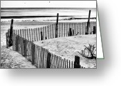 Winter Prints Greeting Cards - Dune Protection Greeting Card by John Rizzuto