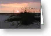 Bill Cannon Photography Greeting Cards - Dune Sunset Greeting Card by Bill Cannon