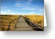 Ocean Path Greeting Cards - Dune Walkway Greeting Card by Carlos Caetano