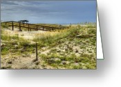 Beach Grass Greeting Cards - Dunes at Tybee Island Greeting Card by Tammy Wetzel