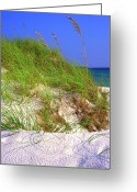 Grayton Beach Greeting Cards - Dunes Trail The Emerald Coast Greeting Card by Thomas R Fletcher