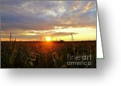 Gloaming Greeting Cards - Dusk Arrives Greeting Card by Elizabeth Hernandez