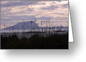 Misty Prints Prints Greeting Cards - Dusk over Clare Island Greeting Card by Paul  Mealey