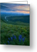 Lupine Greeting Cards - Dusk over the Yakima Valley Greeting Card by Mike  Dawson