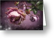 Delicate Mixed Media Greeting Cards - Dusky Pink Roses Greeting Card by Svetlana Sewell