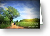 Sunlight Greeting Cards - Dusty road on a beautiful spring day Greeting Card by Sandra Cunningham