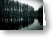 Pond Reflection Greeting Cards - Dutch Waters Greeting Card by David Bowman