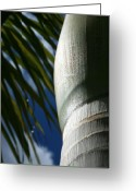 Light Green Digital Art Greeting Cards - E Hawaii Aloha e Greeting Card by Sharon Mau