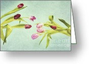 Flower Art Greeting Cards - Eager For Spring Greeting Card by Priska Wettstein