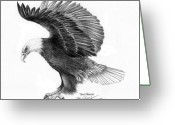 Wolves Drawings Greeting Cards - Eagle attacking Greeting Card by Bob Patterson