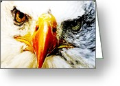 Bird Of Prey Mixed Media Greeting Cards - Eagle Eyed Greeting Card by The DigArtisT