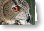 Yellow Beak Painting Greeting Cards - Eagle Owl Greeting Card by Mike Lester
