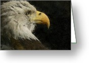 Bald Eagle Digital Art Greeting Cards - Eagle Profile Painterly Greeting Card by Ernie Echols