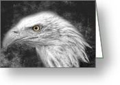 Power Lines Framed Prints Greeting Cards - Eagle two Greeting Card by Jerry Cordeiro