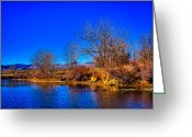 Flood Plain Greeting Cards - Eaglewatch Lake II Greeting Card by David Patterson