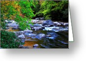 Trout Stream Greeting Cards - Early Autumn along Williams River Greeting Card by Thomas R Fletcher