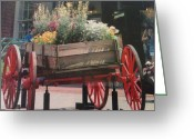 Savannah Square Greeting Cards - Early Days of Savannah Greeting Card by Shawn Hughes