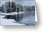 Snow Storm Greeting Cards - Early Fall Storm in Yellowstone Greeting Card by Sandra Bronstein