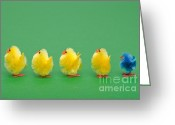 Standing Out From The Crowd Greeting Cards - Easter chicks in a line Greeting Card by Richard Thomas