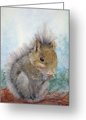 Woods Pastels Greeting Cards - Eastern Gray Squirrel Greeting Card by Loretta Luglio