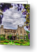 Rochester Ny Greeting Cards - Eastman Wisteria Greeting Card by Emily Stauring