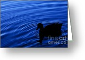 Still Water Greeting Cards - Echoes Greeting Card by Andrew Paranavitana