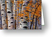 Colorful Tapestries Textiles Greeting Cards - Effulgent October Greeting Card by Johnathan Harris