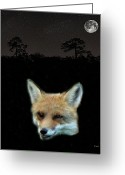 Lesvos Greeting Cards - Eftalou Fox max Greeting Card by Eric Kempson