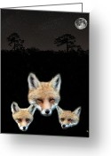 Lesvos Greeting Cards - Eftalou Foxes one Greeting Card by Eric Kempson