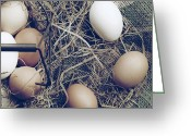 Ute Greeting Cards - Eggs Greeting Card by Joana Kruse