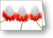 Easter Greeting Cards - Eggsactly Balanced Greeting Card by Rebecca Cozart