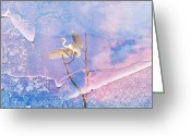 Egret Digital Art Greeting Cards - Egret Coming In For Landing Greeting Card by J Larry Walker